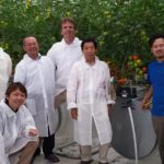 Revolutionary greenhouse technology delivers higher yield and better quality