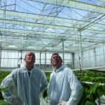 'Controlled removal of moisture results in energy savings'
