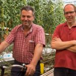 'Good plant balance ensures lower plant burden and faster ripening'