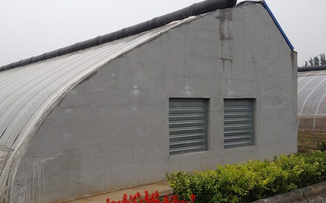 Experts try to revitalise China's failing high tech greenhouses
