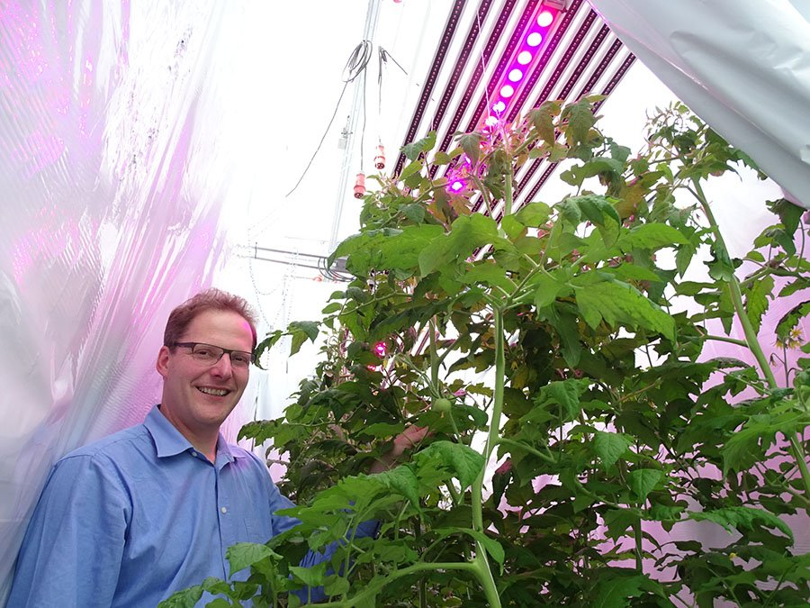 Professor Marcelis conducted research into the benefits of diffuse glazing in greenhouse horticulture as early as 1987.