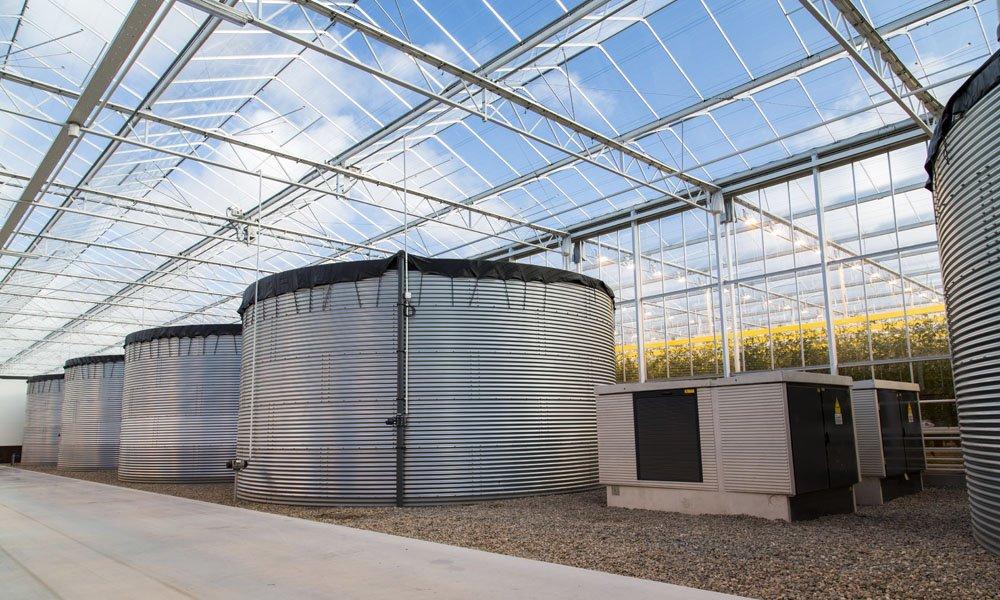 TNO, NWP en LTO roepen tuinbouwtoeleveranciers op om te innoveren in waterzuiveringsinstallaties die aan de regelgeving kunnen voldoen.