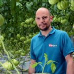 The Belgian tomato nursery Varom uses a combination of a polyphosphate and a biocide to control precipitation and biofilm formation in its water system.
