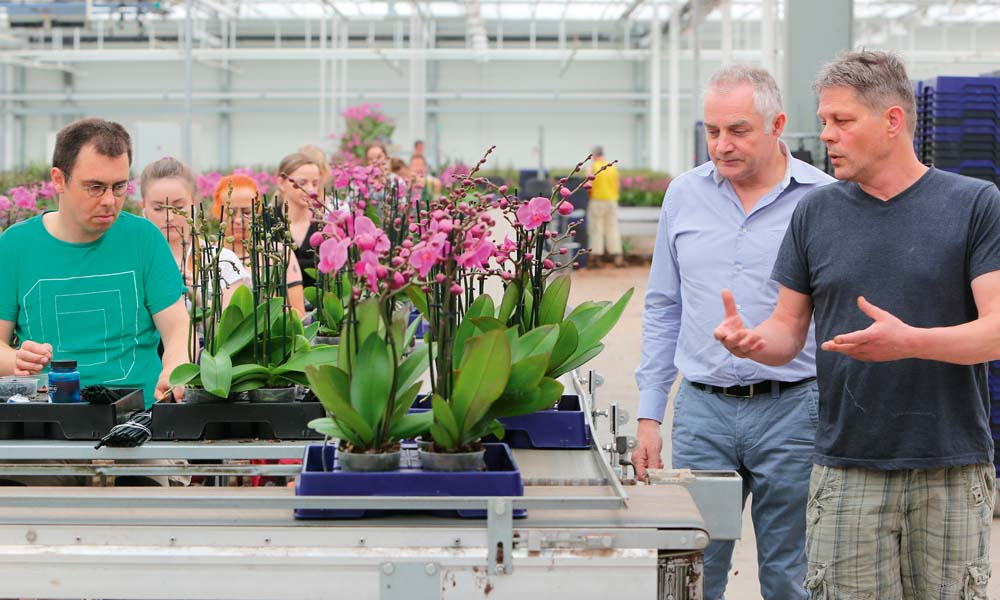 Phalaenopsis growers De Molenhoek have been able to increase the amount of water they recirculate by switching to a new compound fertiliser.