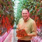 The UK-based Flavourfresh Solfresh group has recently installed a 100% horticultural LED solution to achieve all-year-round production.