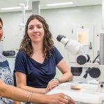 Hyperparasites of aphid predators are an ever increasing problem. A joint project has been set up to investigate ways of controlling the hyperparasites.
