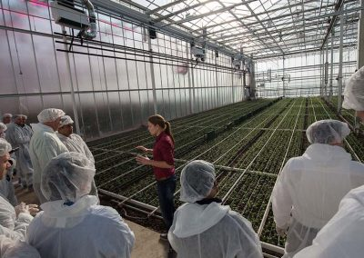 international growers will have the opportunity to join the HortiContact Tour and see first hand the latest developments in Dutch greenhouses.