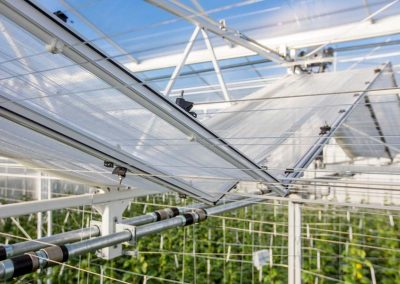The Winterlight greenhouse at the Energy Innovation and Demo Centre (IDC) in Bleiswijk (NL).
