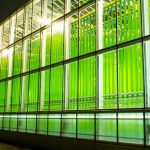 Greenhouse for algae cultivation