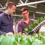 """Herman de Vreede: """"We want to supply large volumes of orchids of a uniform quality in a sustainable way."""""""