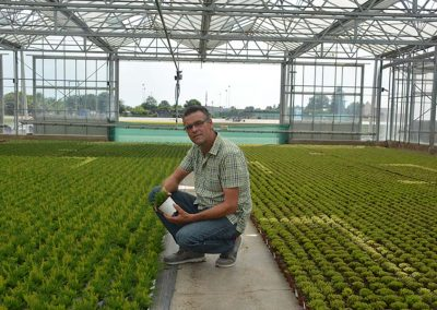 German company grows pot plants and bedding plants for upper segment