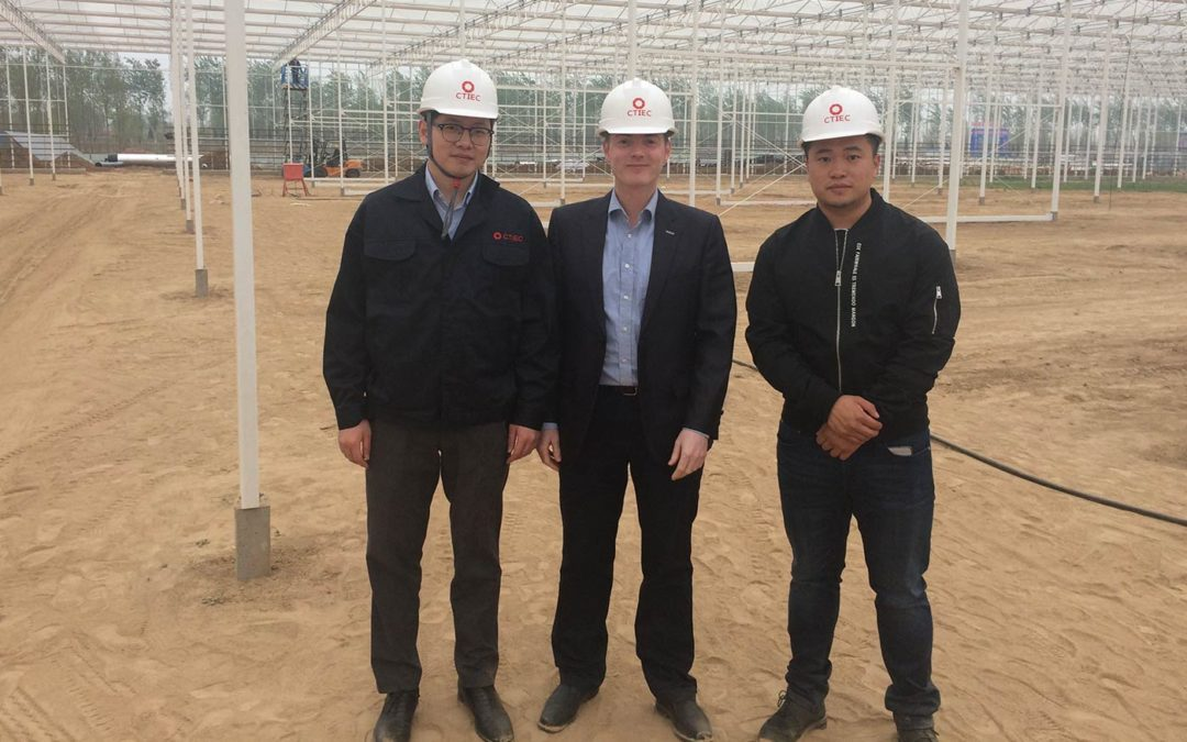 'High-tech greenhouses the direction for Chinese horticulture'